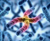 Dépistage prénatal non invasif des anomalies chromosomiques dans le sang maternel: quelles indications?